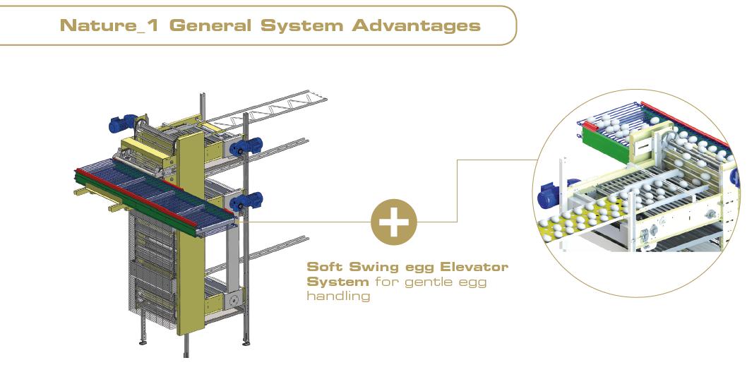 FIT Farm Innovation Team NATURE_1 soft swing egg elevator